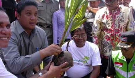 wagub jabar tanam pohon kelapa2